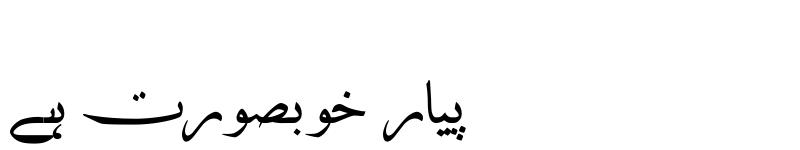 Preview of AA Sameer Qamri Regular